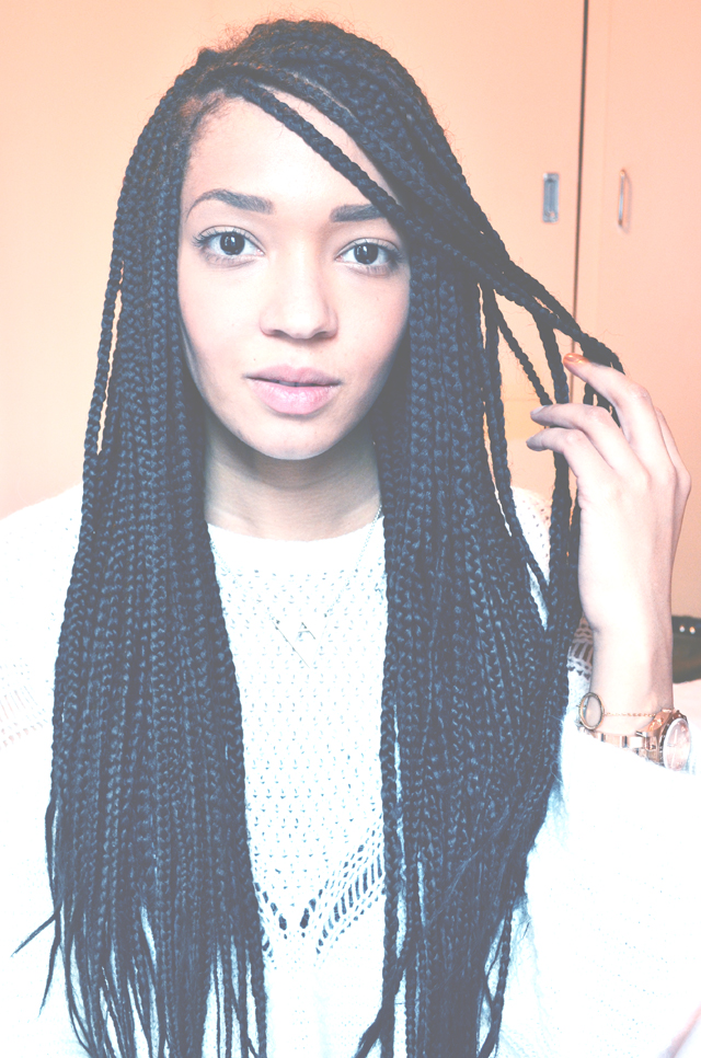Long Rasta Braids Long Hairstyles